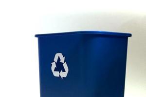 Green Fernie Hotel - recycling