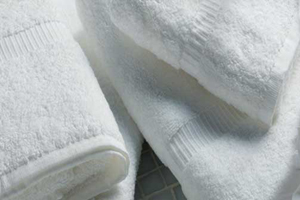 Green Fernie Hotel - reduce towel use