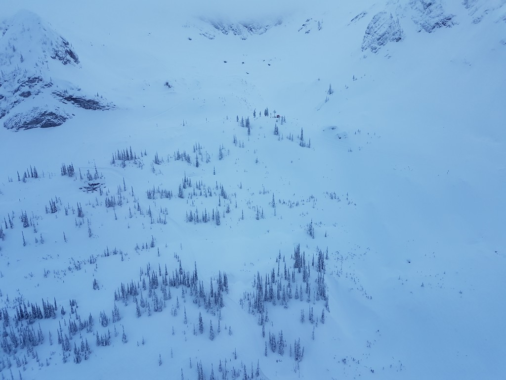 catskiing view from helicopter