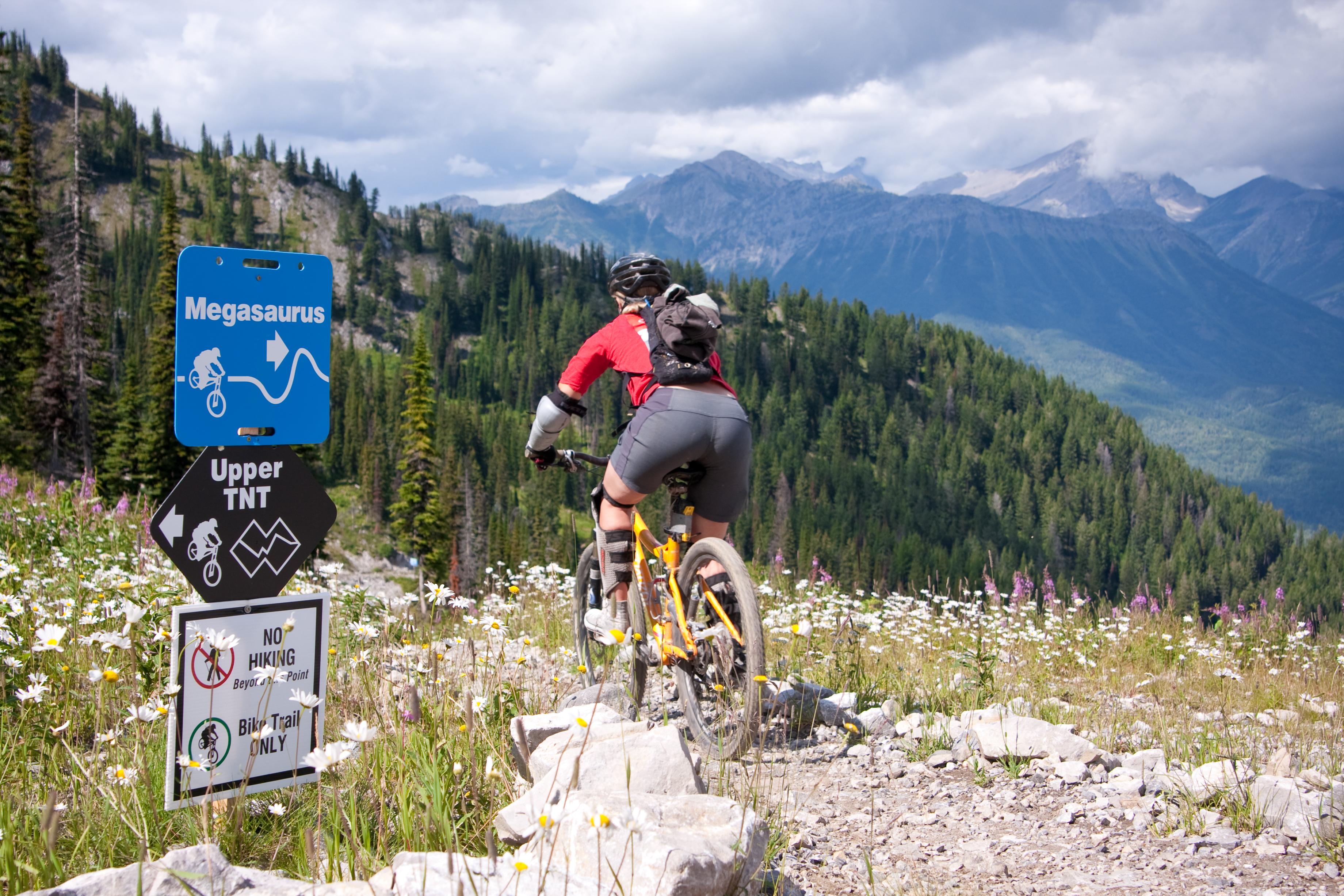 Bike Trails in Fernie