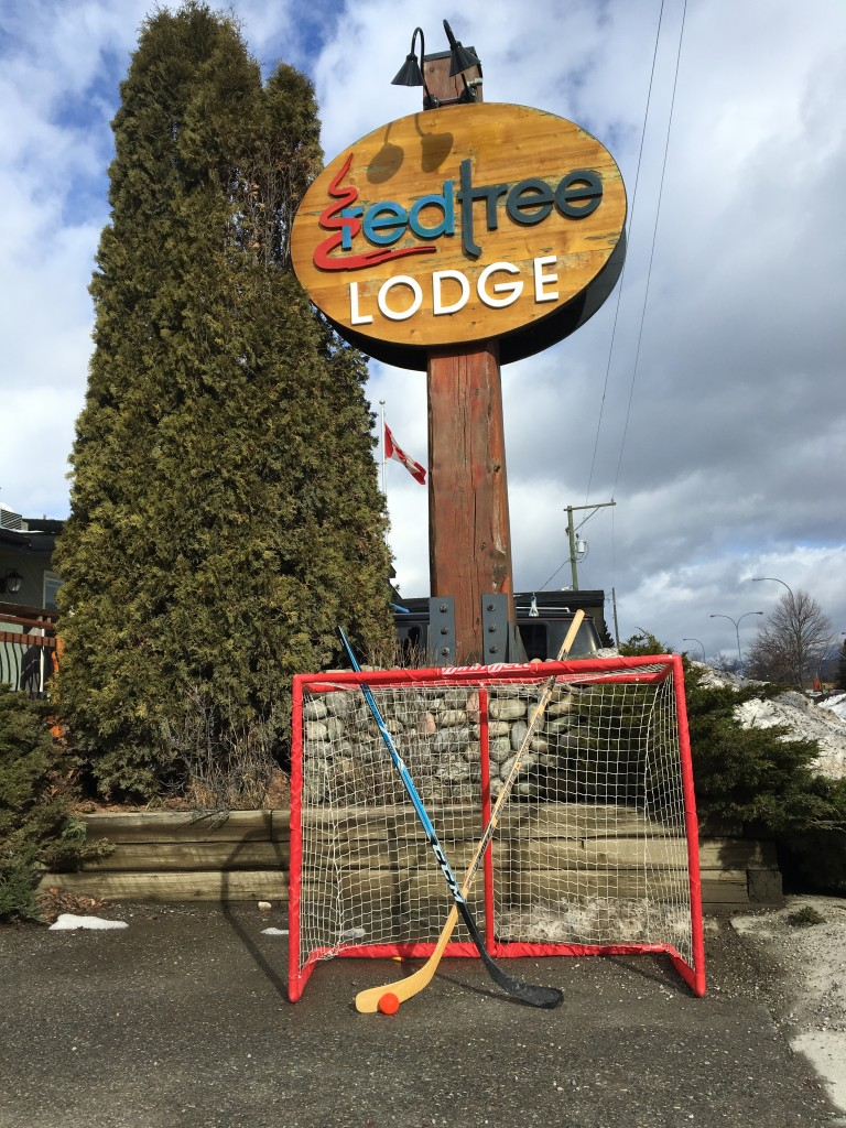 Street Hockey equipment to borrow at the Red Tree Lodge