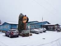 Winter has arrived in Fernie at the Red Tree Lodge
