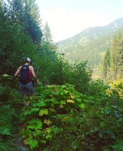 Hiking in Fernie BC