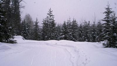 winter activities in fernie