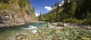 Fly fishing on the Elk River