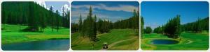 Sparwood Golf Course